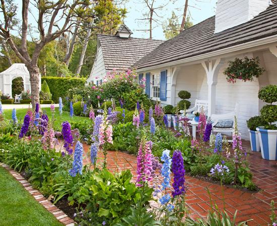 Setting Up a Home Garden
