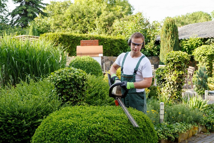 4 Services That Your Local Landscape Gardener Can Offer To The Typical UK Homeowner.
